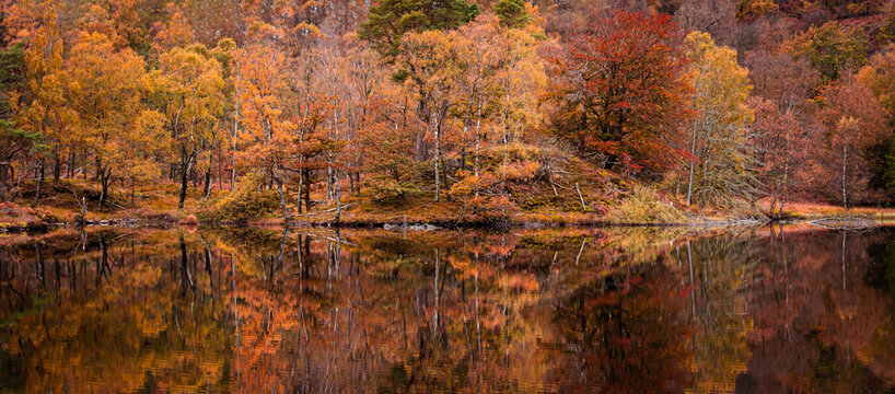 Reflection of colourful trees in lake.Bright and vibrant landscape scene.Nature background, wallpaper.Autumn in Lake District.Idyllic scenery.