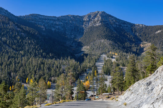 Sunny view of the fall color of Lee Canyon