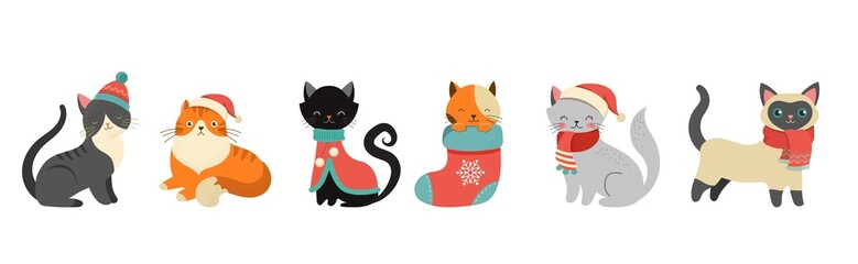 Collection of Christmas cats, Merry Christmas illustrations of cute cats with accessories like a knitted hats, sweaters, scarfs