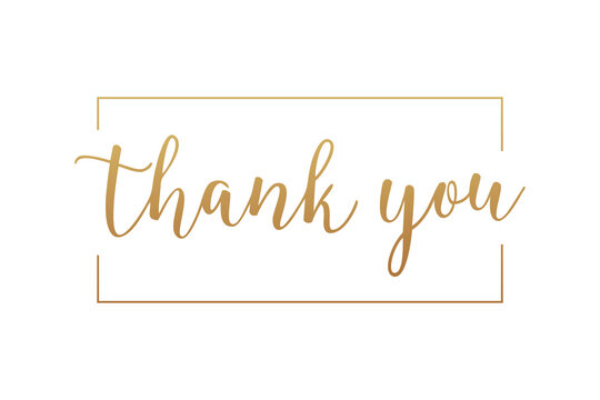 Thank You Card. Gold Text Handwritten Calligraphy Lettering with Square Line Frame Outside isolated On White Background. Flat Vector Illustration Design Template Element.