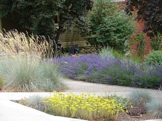 xeriscape landscape with lavender, grasses, sedum and shrubs