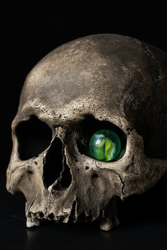 Human skull isolated on black background with glass eye