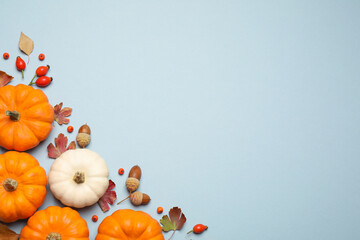 Different pumpkins, autumn leaves, berries and acorns on light blue background, flat lay. Space for text