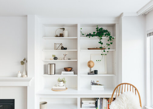 Beautiful interiors of minimal home with bookshelf, furniture, rug and plants