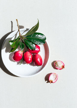 Lilly Pilly (Myrtaceae or Monkey Apple) on white ceramic plate