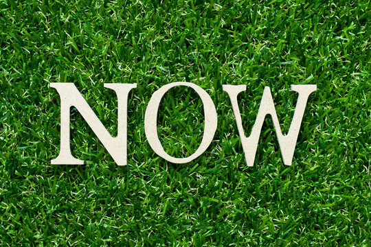 Wood alphabet letter in word now on green grass background