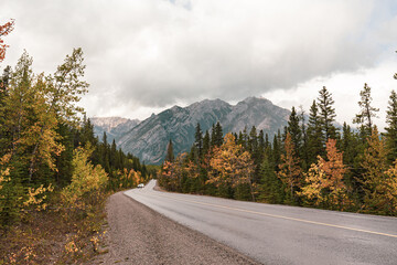Autumn foliage at mountain avenue road to Baff gondola and sulphur mountain with Mount Norquay background