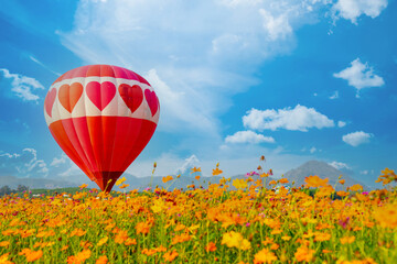 Colorful hot air balloon flying at the natural park and garden. Outdoor activity and travel in Thailand.