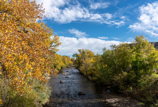 Looking Down Creek Lined with Colorful Fall Cottonwood Trees