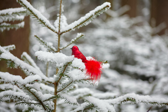 beautiful Christmas decoration in a snowy forest