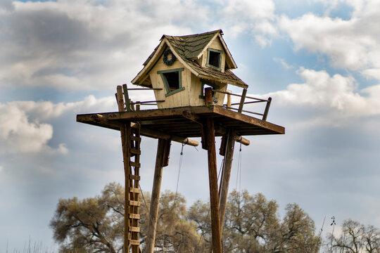 Tall tree house on a farm