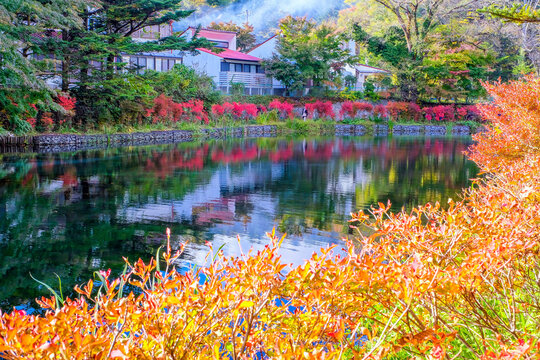 紅葉のツツジと雲場池