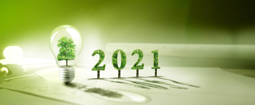 2021 , real estate project, tree ,bulb