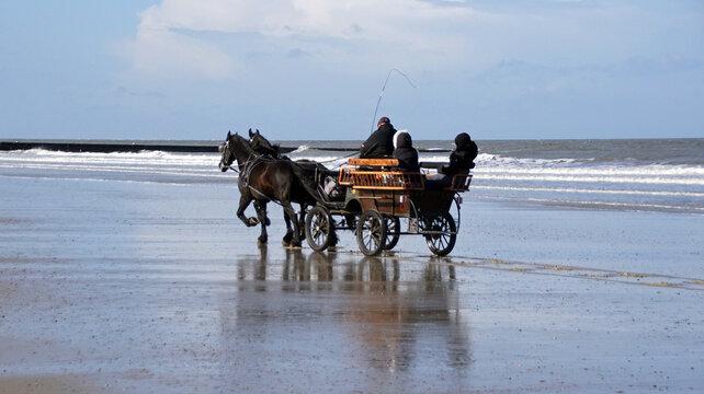 Kutschfahrt am Strand