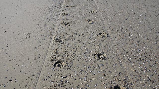 Kutschenspuren am Strand