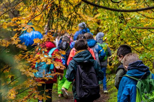Schulausflug / Wandertag: Schulklasse wandert im herbstlichen Wald