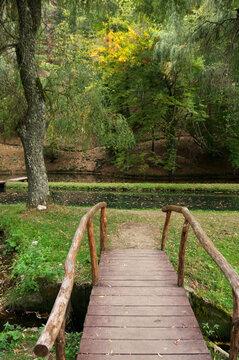 Wood bridge in park with ponds