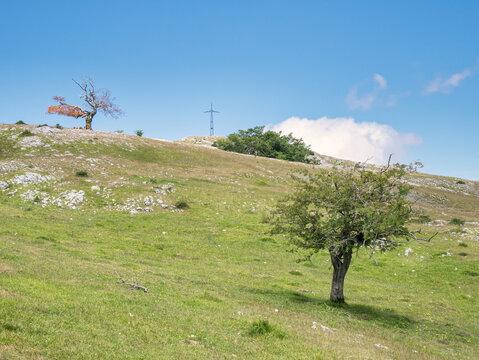 View of peak Mirutegi and the Entzia mountain pastures in June. Alava, Basque Country, Spain