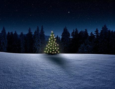 Winterliche Landschaft mit Tannenwald und Weihnachtsbaum