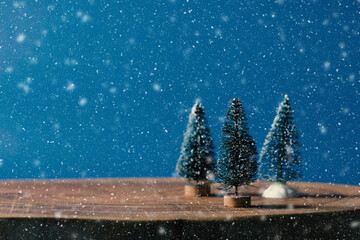 Christmas background with rustic bottle brush trees under snow and copy space on blue backdrop. Cozy winter holiday season.