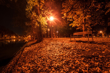 Autumn night landscape in the park