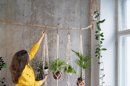 Woman gardener holding macrame plant hanger with houseplant over grey wall. Hobby, love of plants, home decoration concept.