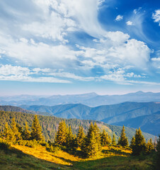 Wall Mural - Magnificent view of green mountains in summer sunny day.