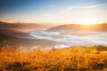 Wall Mural - Tranquil morning moment in alpine valley. Fantastic sunset scene.