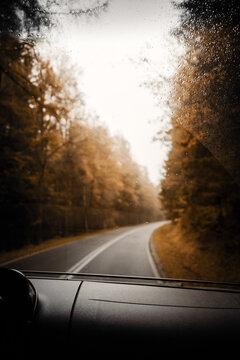 Roadtrip Moment im Herbst aufeinsamer Straße im Wald bei nebliger Stimmung