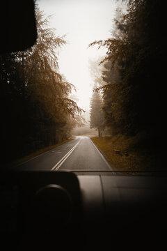 Roadtrip Moment im Herbst auf einsamer Straße im Wald bei nebliger Stimmung