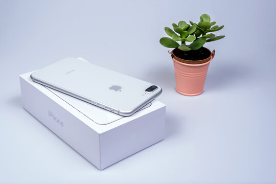Bangkok, Thailand - November 19, 2017:Brand new generation of Apple iPhone  8 plus with box isolate on white background with cactus. iPhone is most popular of smartphone in the world.