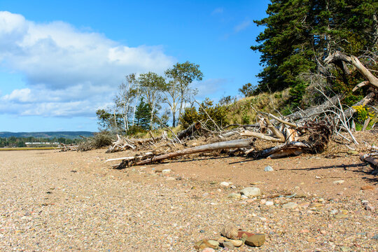 Rocky beach area on the shore of the Bay of Fundy in Five Islands Provincial Park, Nova Scotia, Canada.