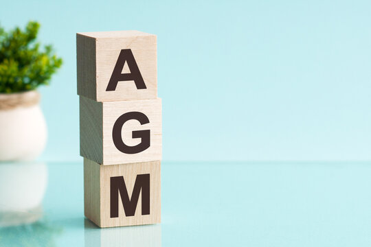 AGM - Annual general meeting - acronym on wooden cubes on blue backround. Business concept