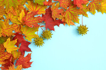 Obraz Autumn background with copy space ideal for tekst in design - fototapety do salonu