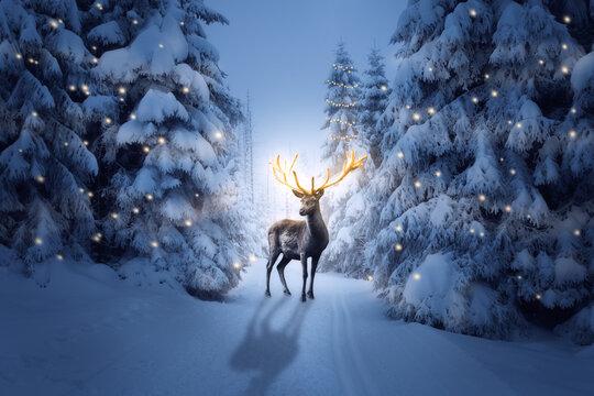 Der Hirsch mit einem goldenen Geweih in einer kalten Winternacht zu Weihnachten