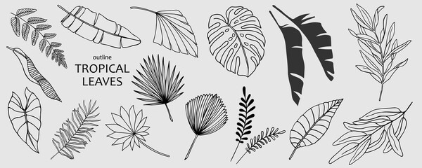Set of hand drawn vector tropical leaves. Silhouettes of abstract branches in minimalistic flat style isolated on white background. Natural elements with a line for the design of patterns, ornaments Wall mural