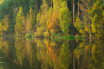 Autumn trees reflected in water in Moscow Region, Russia