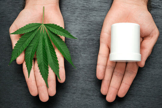 Close up woman hands holding a package with cream and marijuana leaf on the blue background.