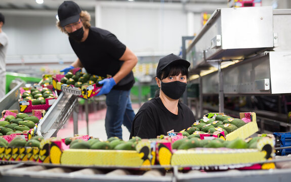 Female worker in uniform and protective mask taking avocado box in hands at warehouse