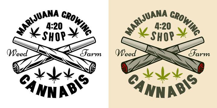Two crossed weed joints vector marijuana emblem