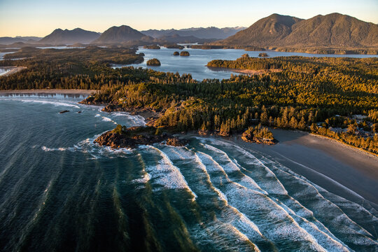 Landscape of Tofino covered in greenery surrounded by the sea in the Vancouver Islands, Canada