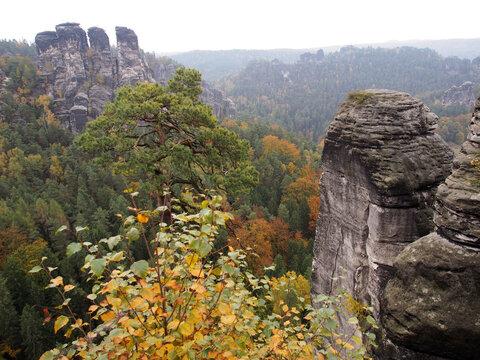 Herbstnebel über den Felsen der Bastei im Elbsandsteingebirge, Sachsen, Deutschland