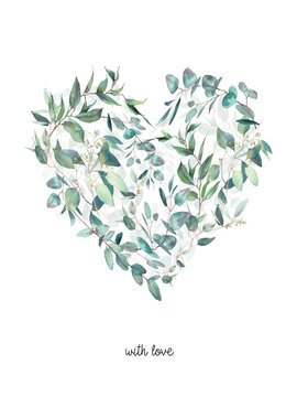 Watercolor eucalyptus plants heart. Hand drawn floral illustration isolated on white background. Natural graphic label: heart silhouette consist of leaves and branches