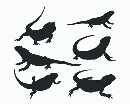 Bearded dragon vector silhouette