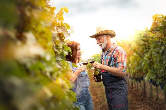 Winemaker enjoy in taste of their wine