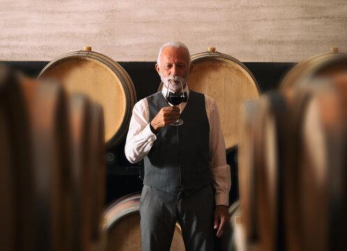 Senior winemaker standing by barrels in his wine cellar