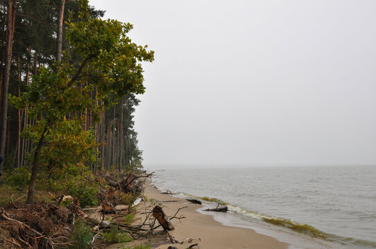 View of the Curonian lagoon in bad weather