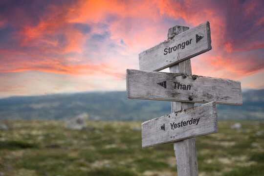 stronger than yesterday text engraved in wooden signpost outdoors in nature during sunset and pink skies.