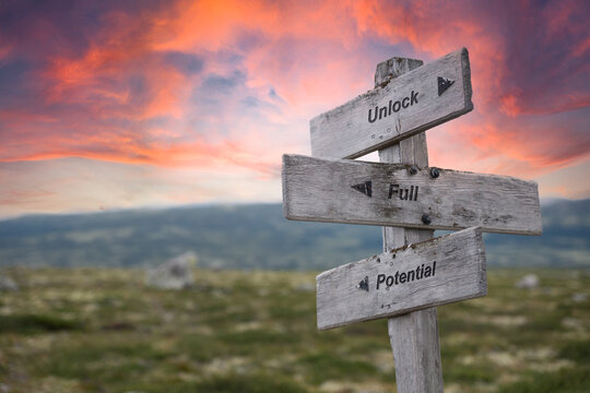 unlock full potential text engraved in wooden signpost outdoors in nature during sunset and pink skies.