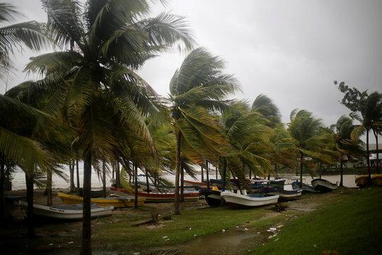 Boats put ashore by fishermen sit under palm trees swaying in the wind as Hurricane Eta passes through Tela